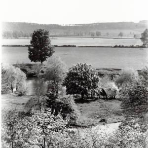 Hampton Park, view from Vineyard Croft