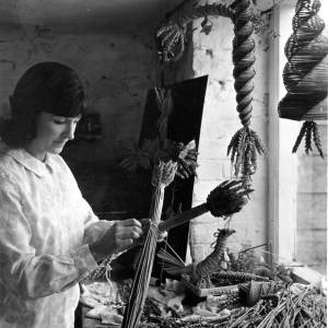 Winifred Newton Sealy making corn dollies