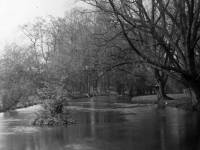 Morden Hall Park: The River Wandle looking downstream