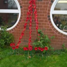 2020 Remembrance Day Poppies at Hawthorn Park Community Primary School, Houghton Regis