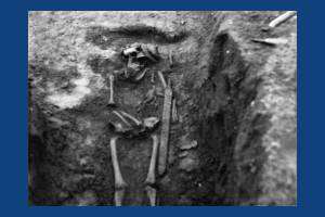 Skeleton from the Anglo-Saxon cemetery