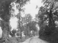 West Barnes Lane, looking north