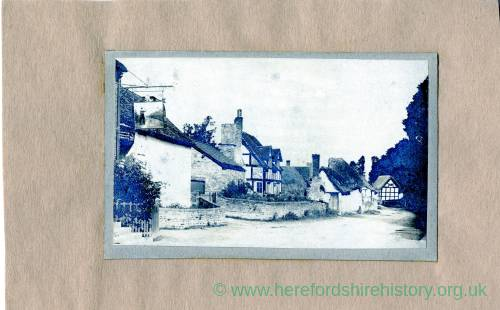 Fownhope, Green Man Inn, 1902