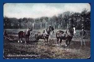 Morden Hall Farm:  Ploughing