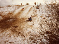 Children sledging on Mitcham Common