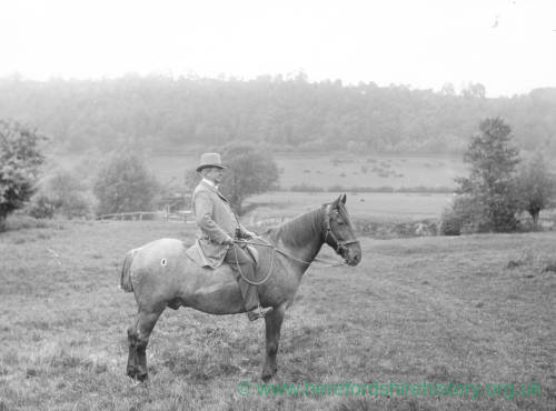 G36-290-01 A man seated on a horse.jpg
