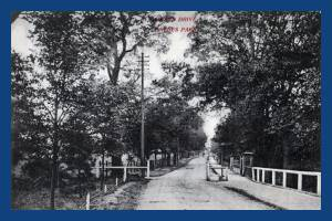 Grand Drive, West Barnes