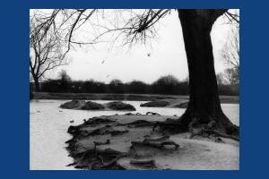Seven Islands Pond in Winter