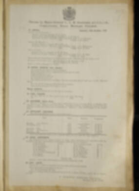 Routine Orders - June 1918 - April 1919 - Page 229