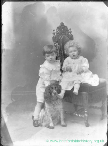 G36-286-07 Two small children and a dog.jpg