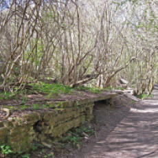 2010 Cycle Path at Sewell Showing Signs of the Vast Limeworks