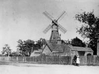 Children near the windmill, Wimbledon Common