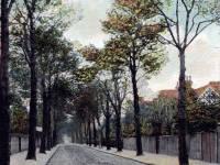 Mostyn Road