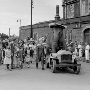 Circus Elephant in a custom made car
