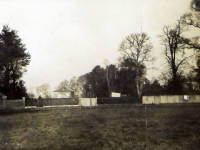 Madeira Road, Mitcham: Canons Nursery before development