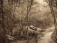 Caesar's Well, Wimbledon Common
