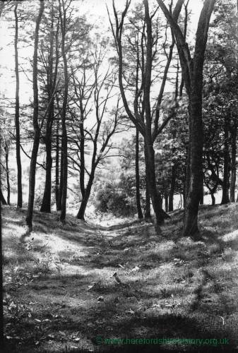 Abbey Dore, devils acre, 1926