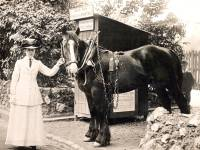 Miss. Ethel Crickmay pictured with Jack the trace horse.