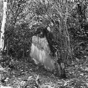 Athelstan's wood, Aconbury, 1926, stone marker