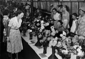 Railway Flower Show, Raynes Park