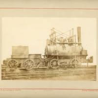 Stallion coal