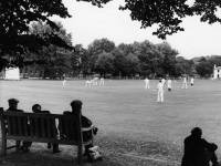 Mitcham Cricket Club