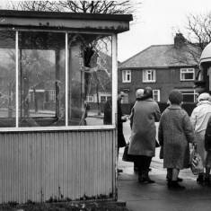 Bus Shelter on Marsden Road