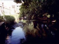 The River Wandle, Merton