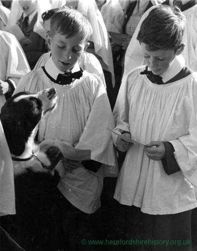 Holy Trinity annual pet service