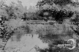 Watermeads, Wandle