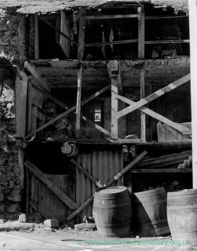 189-1 - Three kittens on a beam