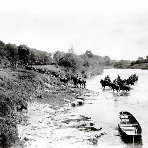 Bridge Sollars, Royal Engineers Horses