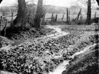 Lonesome Lane, Mitcham