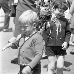 A Little Boy Takes Part in Fownhope Flower Walk, 1969