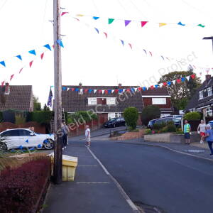 Mackenzie Crescent - VE Day celebrations (75th Anniversary)