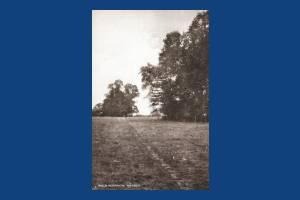 Field Footpath, Morden