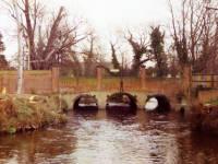 Watermeads, Ravensbury Park