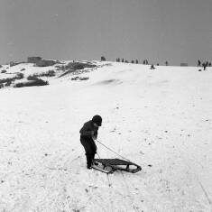Sledging on Cleadon Hills