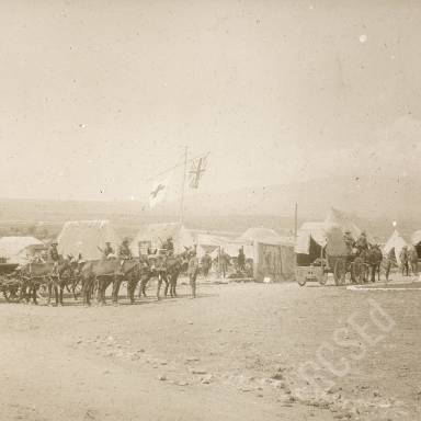 Red Cross Ambulance Wagons at Field Hospital