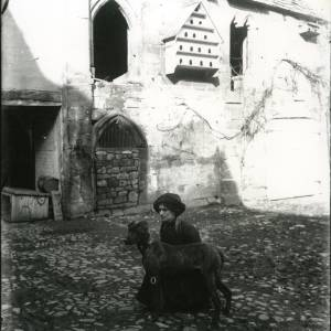 G36-212-07 Brinsop Court, lady crouching beside large brindled dog.jpg