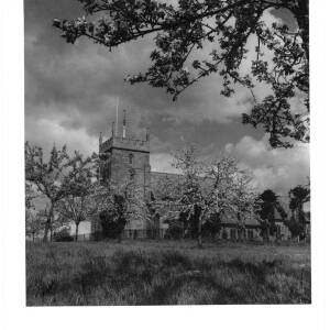 220 - Burghill Church, trees in blossom