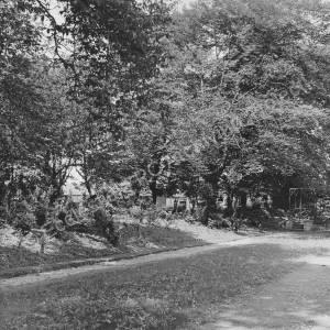 View of Footpath round Sunken Garden