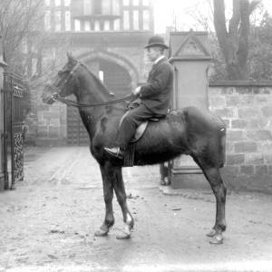G36-244-07 Man mounted on a horse in Palace yard.jpg