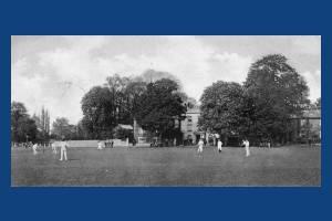 Cricket Green:cricket match