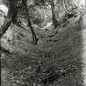 Wormsley guttering or sunken road on hill, 1922