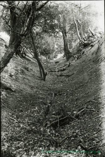 Wormsley guttering or sunken road on hill, 1922