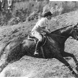 116 - Horse jumping through water, female rider