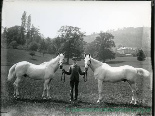 G36-003-02 Man holding two horses. Large country house in background.jpg