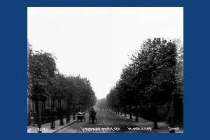 Haydons  Park Road, Wimbledon
