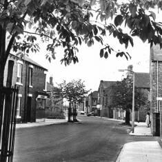 Alnwick Road, South Shields